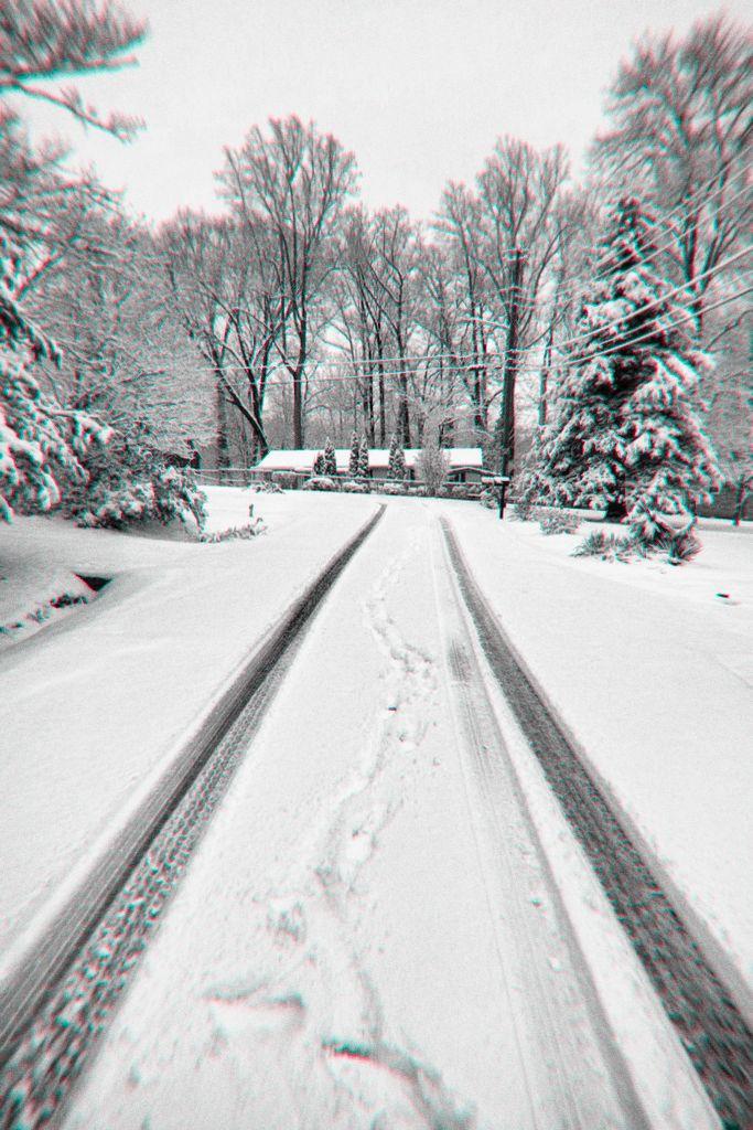 Snow tracks  . . .